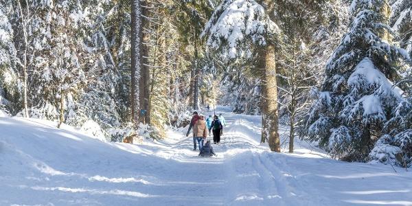 Winterwandern auf dem Kniebis