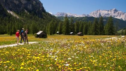 Hüttenwanderung in den Dolomiten