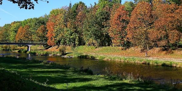 Herbst an der Wiese.