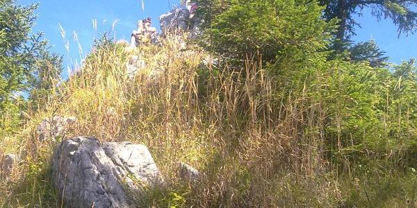 Geierstein-Gipfel