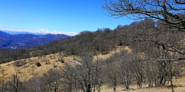 Am Monte San Giorgio.