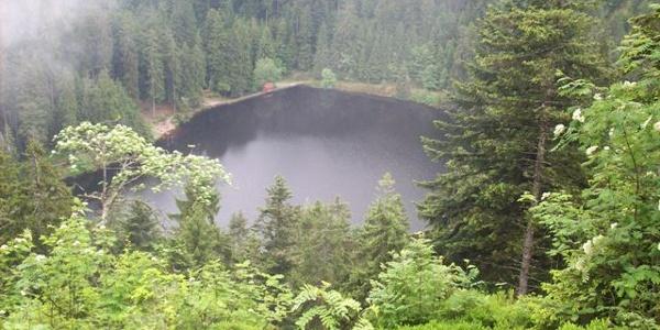 Der Glaswaldsee in Bad Peterstal-Griesbach