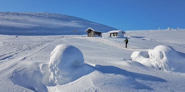 National Parks is great for skiing also! Here Montellinmaja Wilderness Hut high up in the Fells.