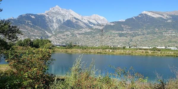 An der Rhone auf dem «Chemin des berges du Rhône».
