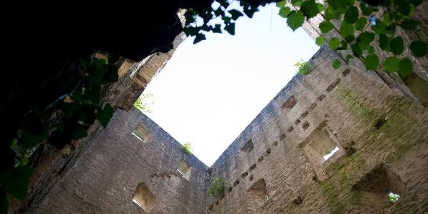 Blick in die Burgruine Sommerau