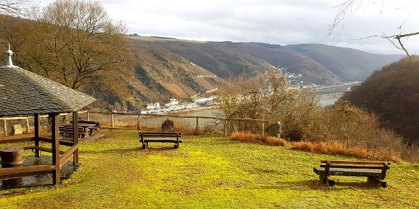 Aussichtspunkt Pfalzblick