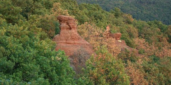 A Jakab-hegy oldalában sorakoznak a Babás-szerkövek
