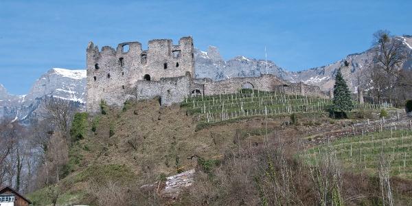 Burghügel mit Weinterrassen
