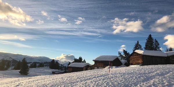 Winterwandern auf Tratza
