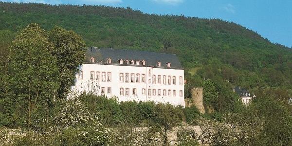 Sauer-Radweg_Blick auf Burg Bollendorf