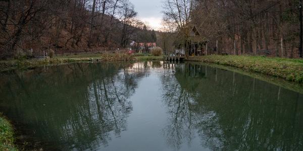 Az egyik pisztrángos tó Óbánya szélén