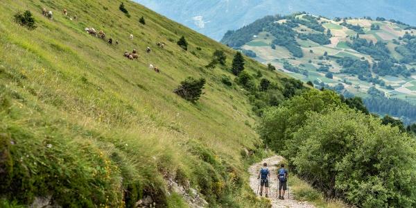 Auf dem Monte Stivo