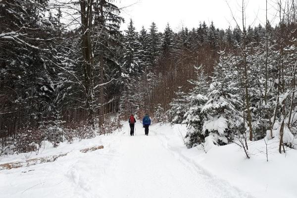 Winterlicher Weg zu den Heuberg Almen