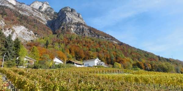 Weinbauweg Sargans-Mels