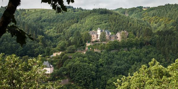 Blick auf Burg Neuerburg