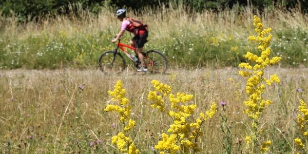 Mountain bike bringával érdemes nekiindulni a túrának