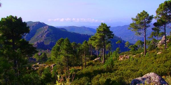 Blick vom GR 20 auf Conca