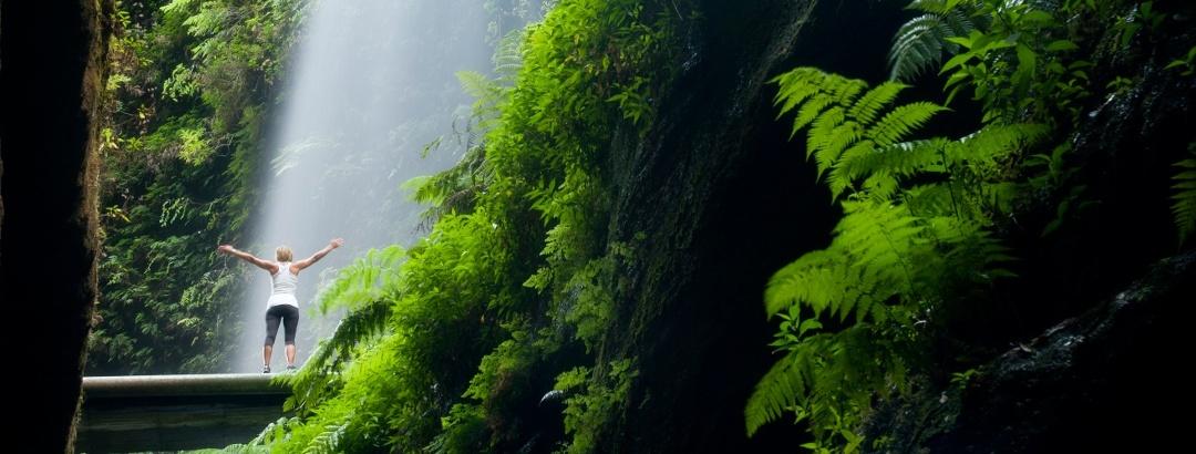 Cascada los Tilos, La Palma