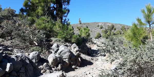 Abzweig zum Pico de la Nieve