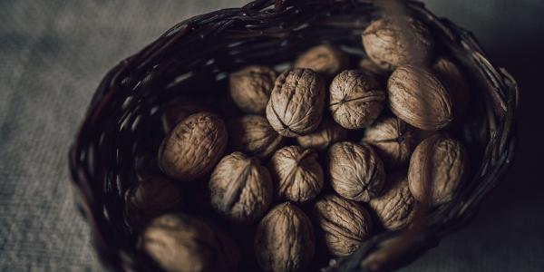 Cesto di Noci del Bleggio, Presidio Slow Food