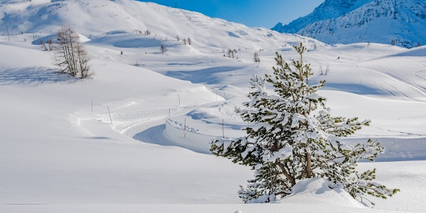 Winter hiking Simplon