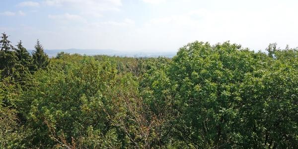 Blick vom Aussichtturm am Lüdenstein
