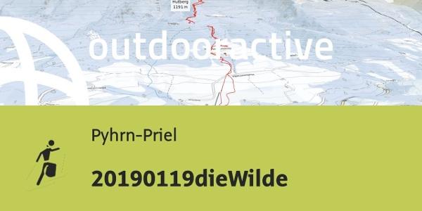 Skitour in Pyhrn-Priel: 20190119dieWilde