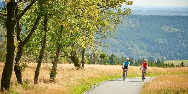 Rennrad auf dem SauerlandRadring