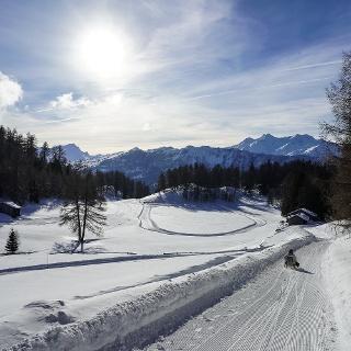 Schlittelweg Mutta - Nordhang - Feldis