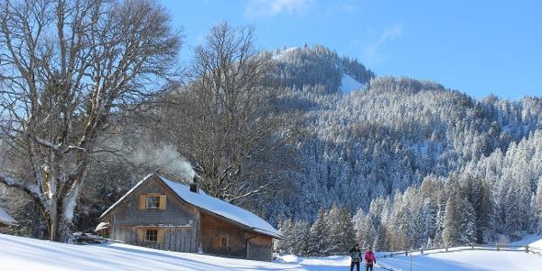 Verschneite Winterlandschaft am Hochplateau Tschengla