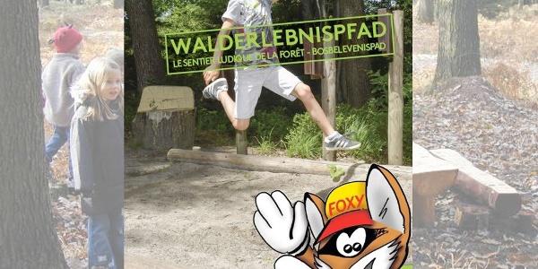 Eupen_Walderelbnispfad_Foxy_09(c)TI_Eupen.jpg
