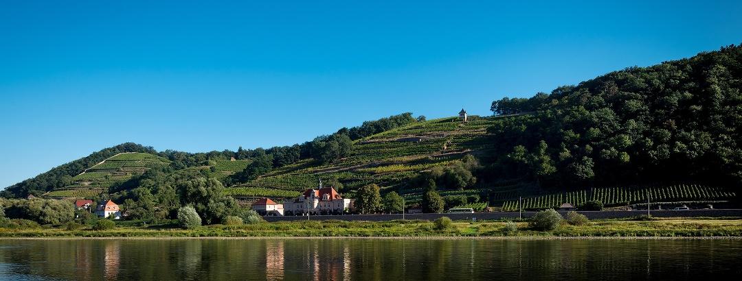 Die Sächsische Weinstraße
