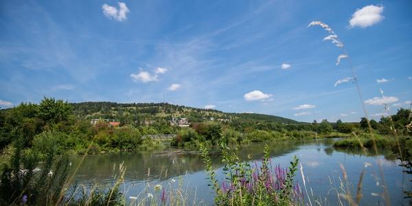 Stadtweiher Riedenburg