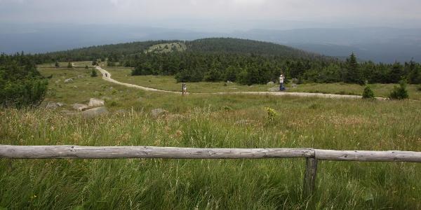 Der Heinrich-Heine-Weg führt auf den Brocken hinauf (Blick vom Brocken)