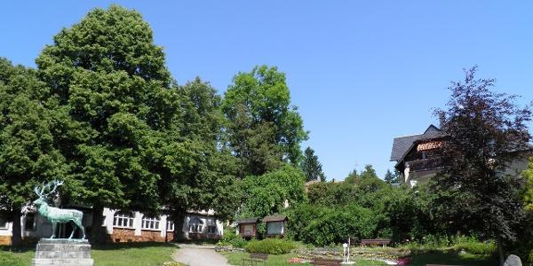 Kurplatz Hartha