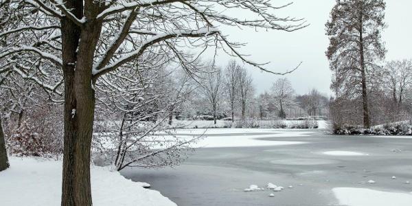 … der kleine Teich ist zugefroren.