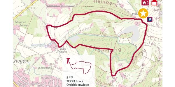 """TERRA.track Orchideenwiese – Ausschnitt der Schautafel am Naturpark-Wanderparkplatz """"Lorenkamp""""."""