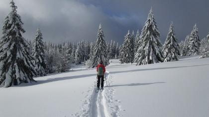 Winteridyll auf dem Weg zum Herzogenhorn