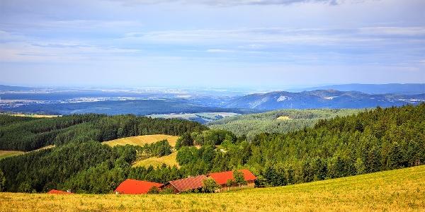 Blick vom Kapellenweg ins Steinfeld