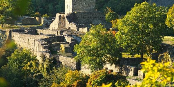 Ruine Schmidtburg 1