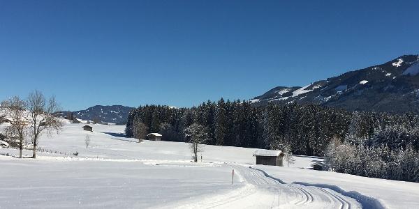 Langlaufliope in Obermaiselstein
