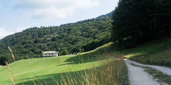Die Wiesen in der Gegend der Alm (Malga) Vigo