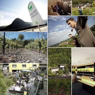 Weingut Philipps Mühle