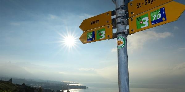Der Weg von Vevey nach Lausanne ist bestens markiert.