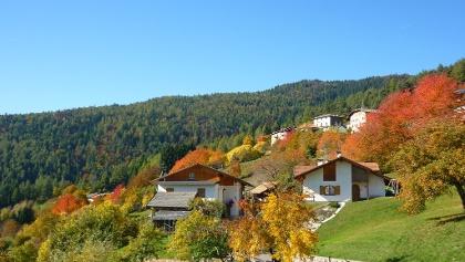 In autunno i masi sono circondati dai colori degli antichi alberi da frutto