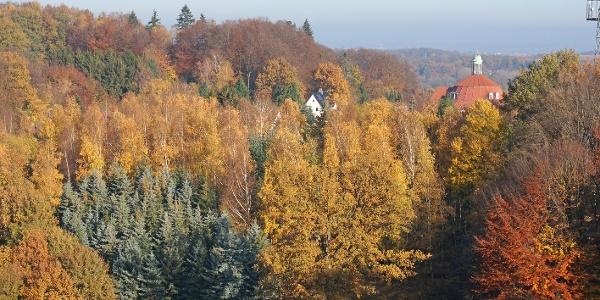 Im Hintergrund das Dach vom Kloster Ohrbeck