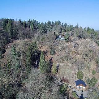 Sächsisches Landesarboretum