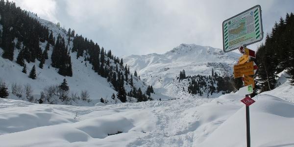 Im Val Segnas
