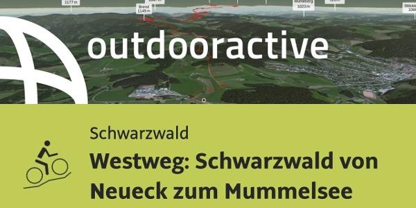 Mountainbike-tour im Schwarzwald: Westweg: Schwarzwald von Neueck zum Mummelsee