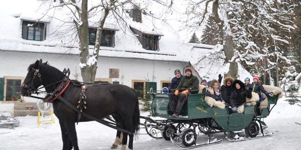 Kutsch-und Pferdeschlittenfahrten direkt  ab Vorwerk buchbar